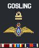 VBF-12 Gosling Avatar